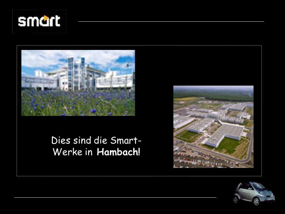 Dies sind die Smart- Werke in Hambach!