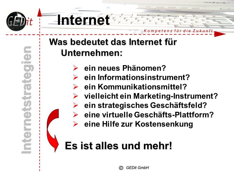 Internet Internetstrategien Was bedeutet das Internet für Unternehmen: ein neues Phänomen.