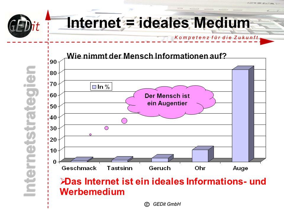 Internet = ideales Medium Wie nimmt der Mensch Informationen auf.