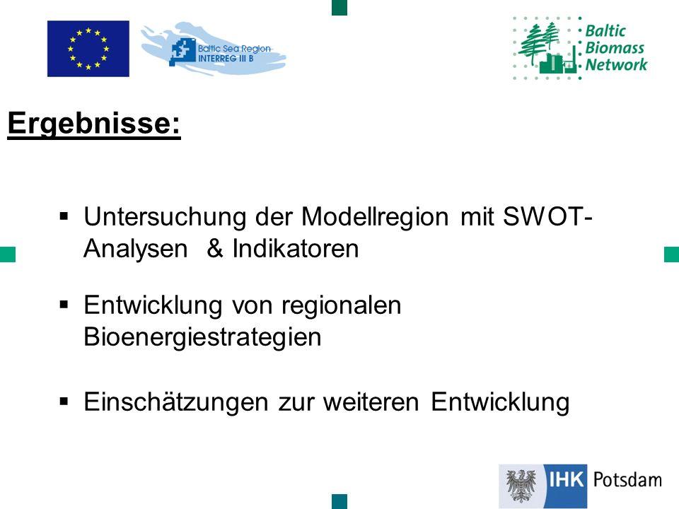 Untersuchung der Modellregion mit SWOT- Analysen & Indikatoren Entwicklung von regionalen Bioenergiestrategien Einschätzungen zur weiteren Entwicklung