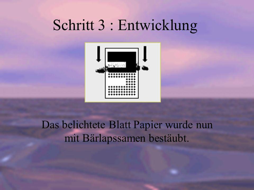 Schritt 3 : Entwicklung Das belichtete Blatt Papier wurde nun mit Bärlapssamen bestäubt.