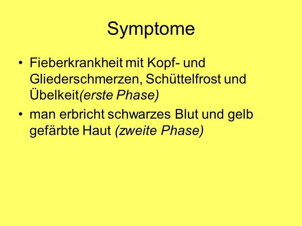 Symptome Fieberkrankheit mit Kopf- und Gliederschmerzen, Schüttelfrost und Übelkeit(erste Phase) man erbricht schwarzes Blut und gelb gefärbte Haut (z