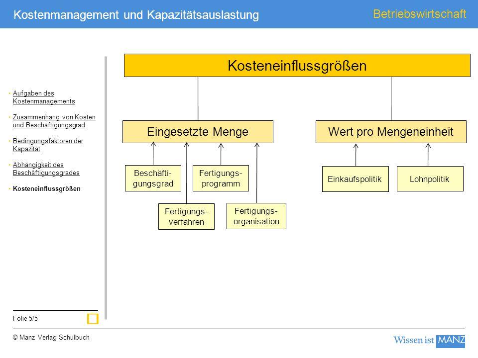 © Manz Verlag Schulbuch Betriebswirtschaft Folie 5/5 Kostenmanagement und Kapazitätsauslastung Eingesetzte MengeWert pro Mengeneinheit Kosteneinflussg