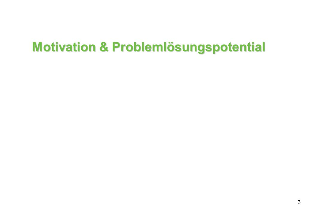 3 Motivation & Problemlösungspotential