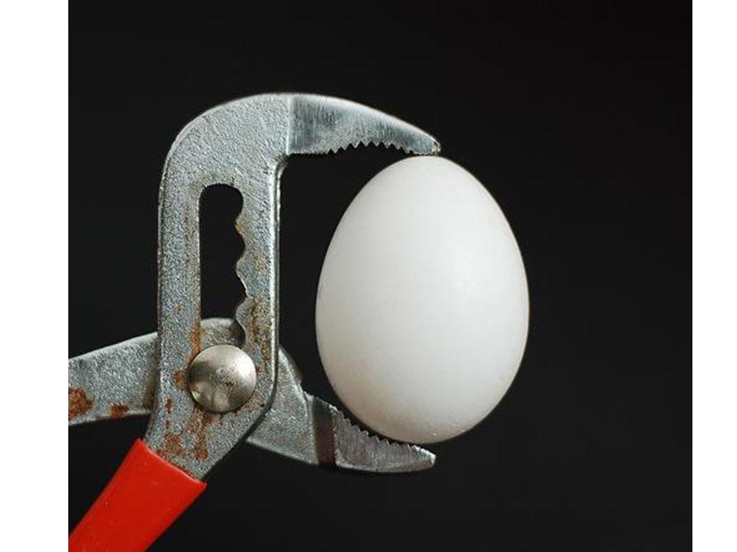 Ratatatong Eier im Karton!