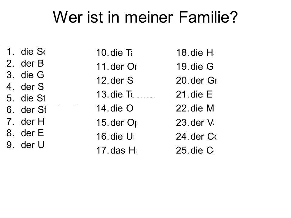 Wer ist in meiner Familie? 1.die Schwester 2.der Bruder 3.die Geschwister 4.der Stiefvater 5.die Stiefmutter 6.der Stiefbruder 7.der Halbbruder 8.der