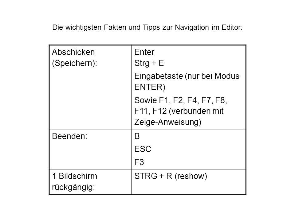 Die wichtigsten Fakten und Tipps zur Navigation im Editor: Abschicken (Speichern): Enter Strg + E Eingabetaste (nur bei Modus ENTER) Sowie F1, F2, F4,