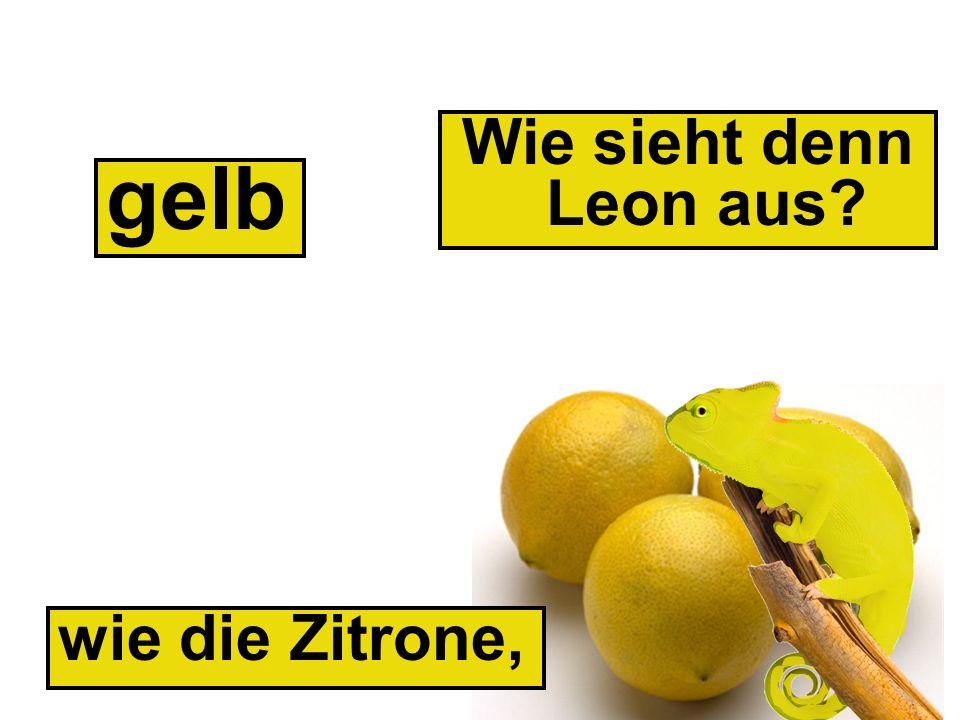 wie die Zitrone, gelb Wie sieht denn Leon aus?