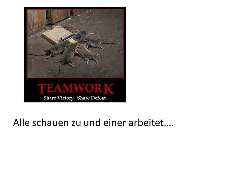 Teamwork Wer kann was.Wie verteilen wir die Arbeit gleichmässig.