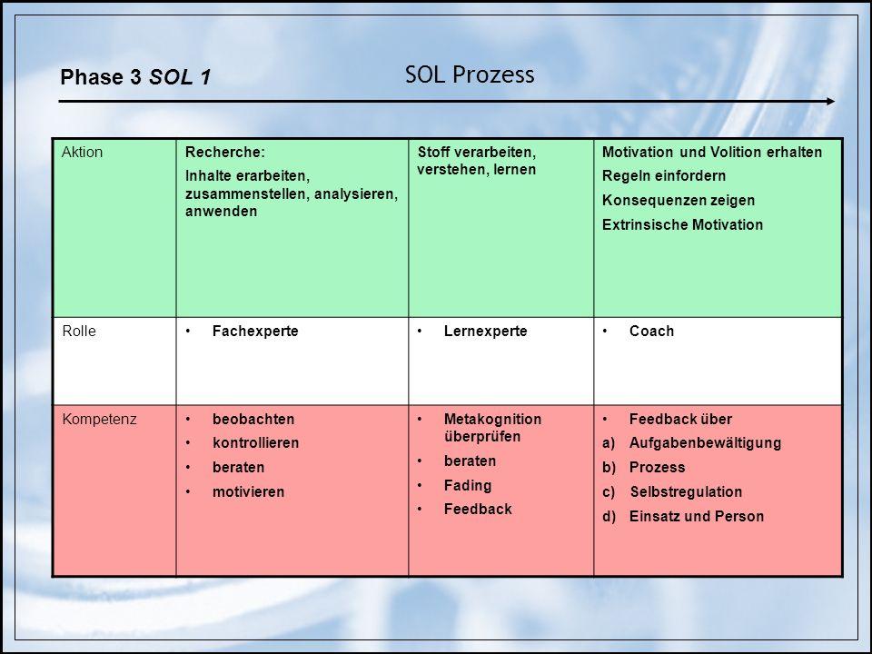 SOL Prozess AktionRecherche: Inhalte erarbeiten, zusammenstellen, analysieren, anwenden Stoff verarbeiten, verstehen, lernen Motivation und Volition e
