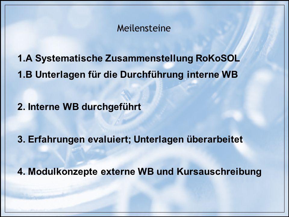 Meilensteine 1.A Systematische Zusammenstellung RoKoSOL 1.B Unterlagen für die Durchführung interne WB 2. Interne WB durchgeführt 3. Erfahrungen evalu
