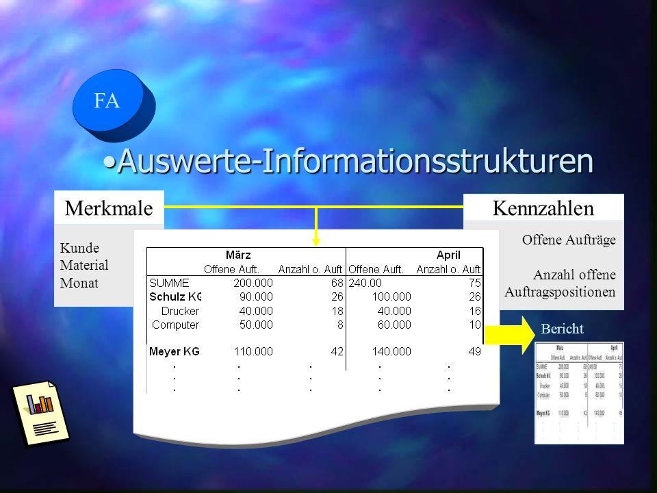 FA Auswerte-InformationsstrukturenAuswerte-Informationsstrukturen Merkmale Kunde Material Monat Kennzahlen Offene Aufträge Anzahl offene Auftragsposit