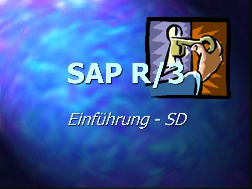 SAP R/3 SD - Vertriebsunterstützung