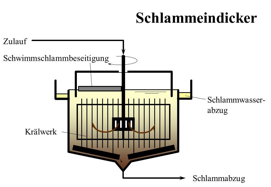 Zulauf Schlammwasser- abzug Schlammabzug Schwimmschlammbeseitigung Krälwerk Schlammeindicker