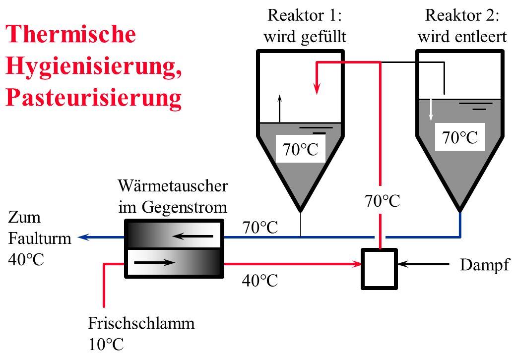 Thermische Hygienisierung, Pasteurisierung 70°C Wärmetauscher im Gegenstrom Dampf Reaktor 1: wird gefüllt Reaktor 2: wird entleert Frischschlamm 10°C