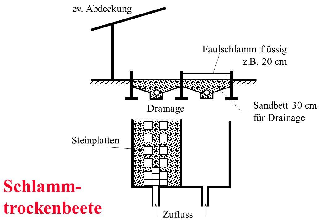 Faulschlamm flüssig z.B. 20 cm Sandbett 30 cm für Drainage ev. Abdeckung Zufluss Drainage Steinplatten Schlamm- trockenbeete