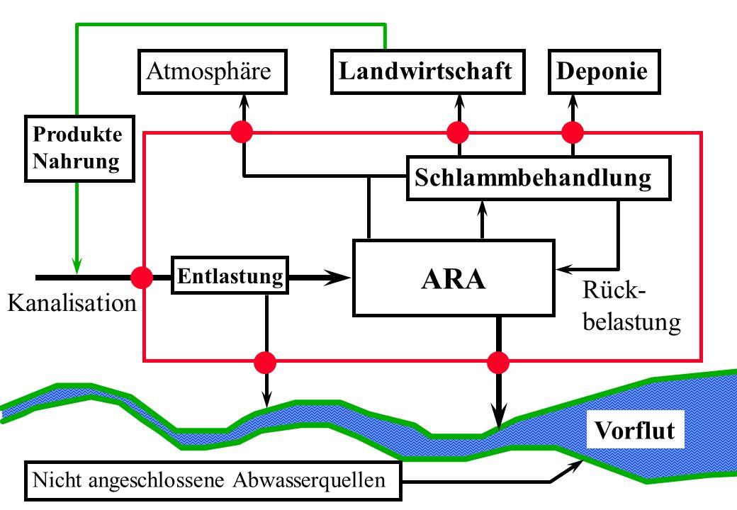 Vorflut ARA Entlastung Schlammbehandlung AtmosphäreLandwirtschaftDeponie Produkte Nahrung Nicht angeschlossene Abwasserquellen Rück- belastung Kanalis