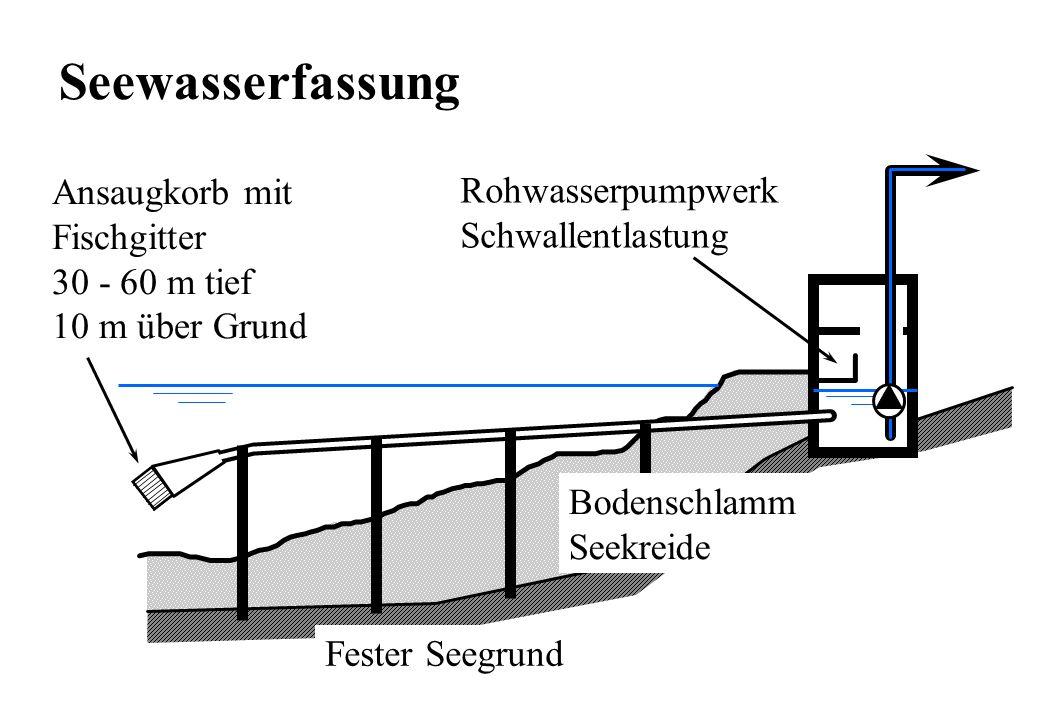 Fester Seegrund Rohwasserpumpwerk Schwallentlastung Bodenschlamm Seekreide Ansaugkorb mit Fischgitter 30 - 60 m tief 10 m über Grund Seewasserfassung