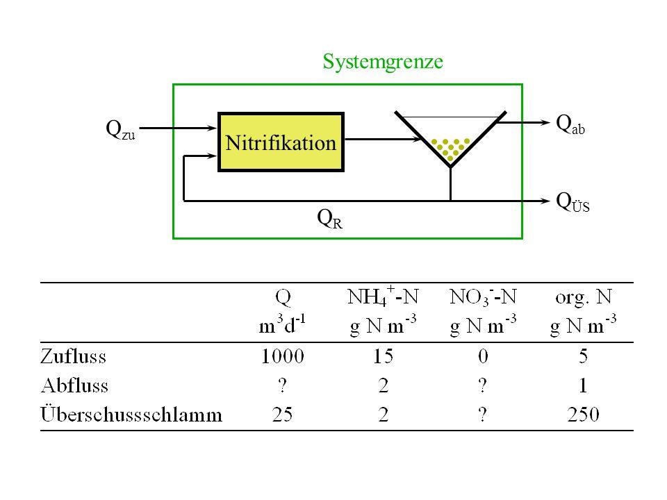 Nitrifikation Q zu QRQR Q ÜS Q ab Systemgrenze
