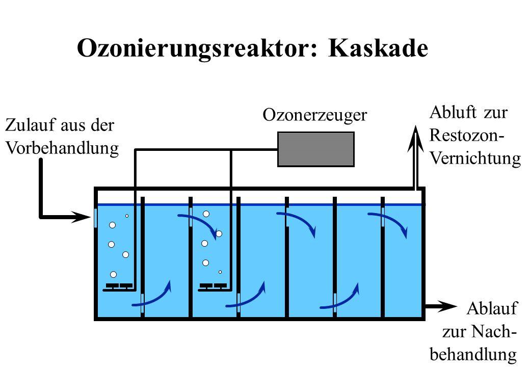 Ozonerzeuger Abluft zur Restozon- Vernichtung Zulauf aus der Vorbehandlung Ablauf zur Nach- behandlung Ozonierungsreaktor: Kaskade