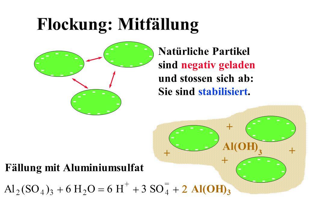 Flockung: Mitfällung - - -- - - - - - - - - - -- - - - - - - - - - -- - - - - - - - Natürliche Partikel sind negativ geladen und stossen sich ab: Sie