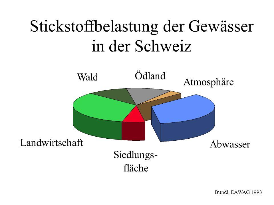 Ödland Abwasser Siedlungs- fläche Atmosphäre Wald Landwirtschaft Stickstoffbelastung der Gewässer in der Schweiz Bundi, EAWAG 1993