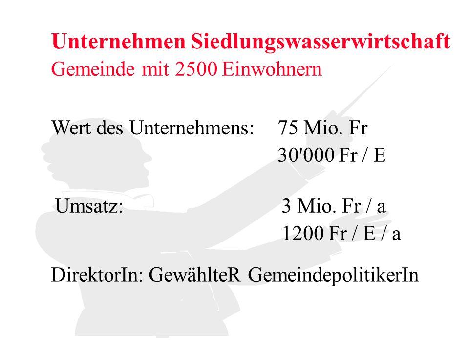Unternehmen Siedlungswasserwirtschaft Gemeinde mit 2500 Einwohnern Wert des Unternehmens: Umsatz: 75 Mio. Fr 3 Mio. Fr / a 1200 Fr / E / a 30'000 Fr /