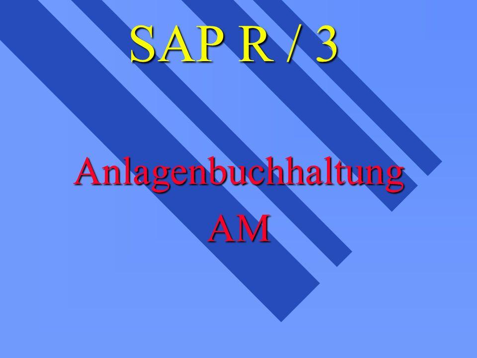 SAP R / 3 AnlagenbuchhaltungAM