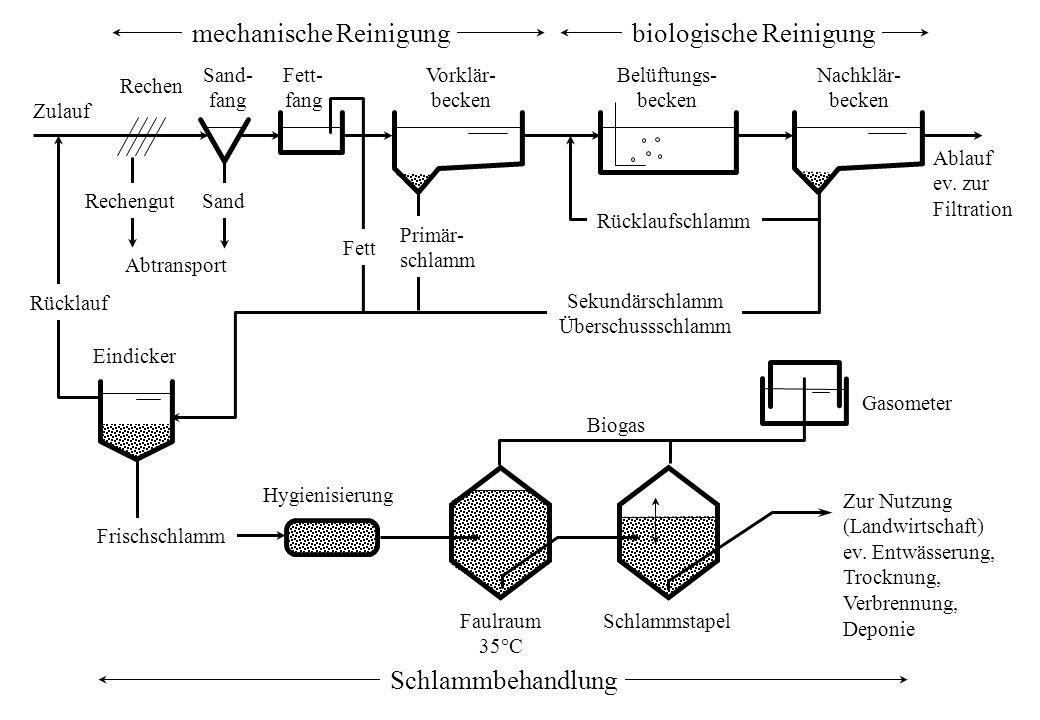 Zur Nutzung (Landwirtschaft) ev. Entwässerung, Trocknung, Verbrennung, Deponie mechanische Reinigungbiologische Reinigung Rücklaufschlamm RechengutSan