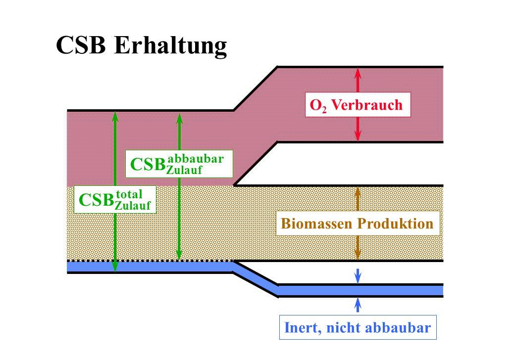 O 2 Verbrauch Biomassen Produktion CSB Zulauf abbaubar CSB Zulauf total Inert, nicht abbaubar CSB Erhaltung