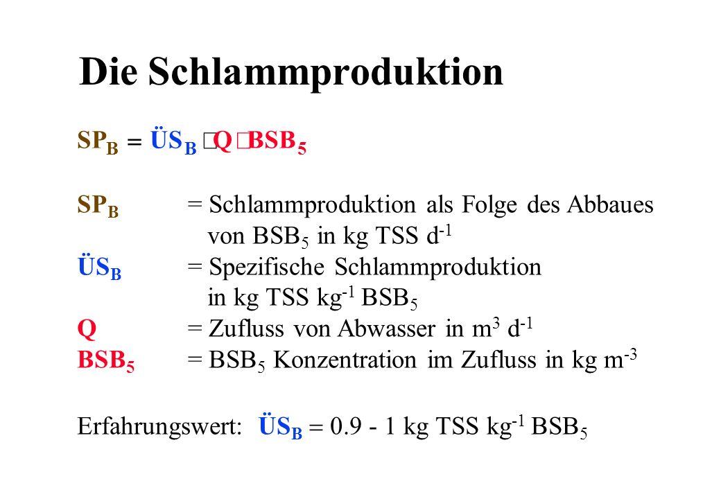 Die Schlammproduktion Erfahrungswert: ÜS B 0.9 - 1 kg TSS kg -1 BSB 5 SP B = Schlammproduktion als Folge des Abbaues von BSB 5 in kg TSS d -1 ÜS B = S