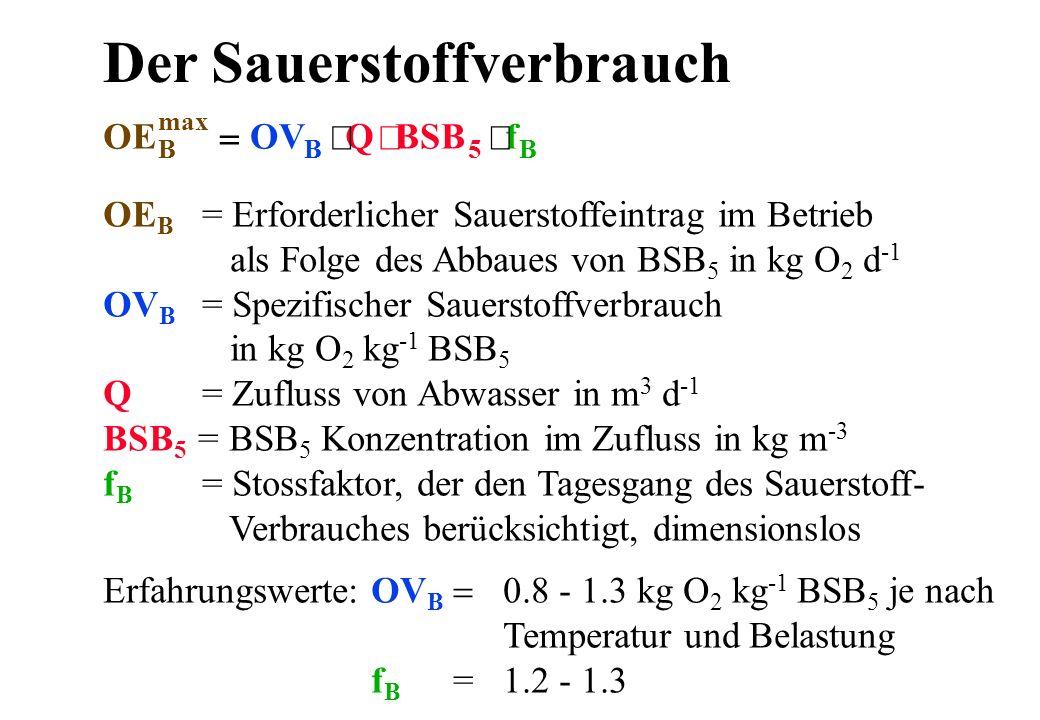 Der Sauerstoffverbrauch Erfahrungswerte: OV B 0.8 - 1.3 kg O 2 kg -1 BSB 5 je nach Temperatur und Belastung f B =1.2 - 1.3 OE B = Erforderlicher Sauer