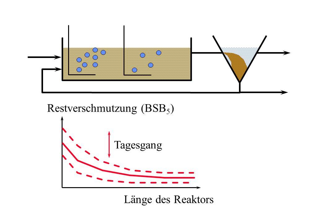 Restverschmutzung (BSB 5 ) Länge des Reaktors Tagesgang
