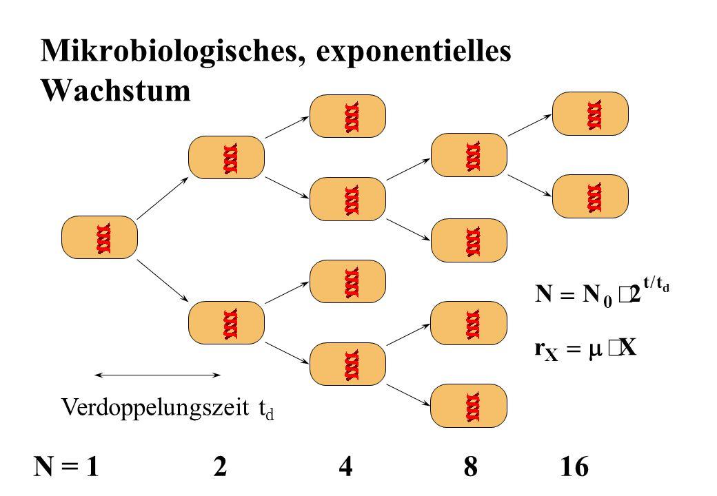 Mikrobiologisches, exponentielles Wachstum N = 1 2 4 8 16 Verdoppelungszeit t d NN tt d 0 2 / rX X