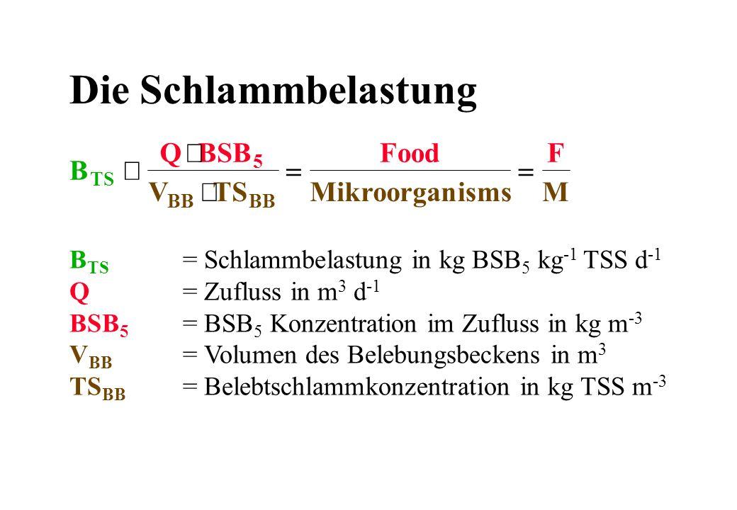 Die Schlammbelastung B TS = Schlammbelastung in kg BSB 5 kg -1 TSS d -1 Q= Zufluss in m 3 d -1 BSB 5 = BSB 5 Konzentration im Zufluss in kg m -3 V BB