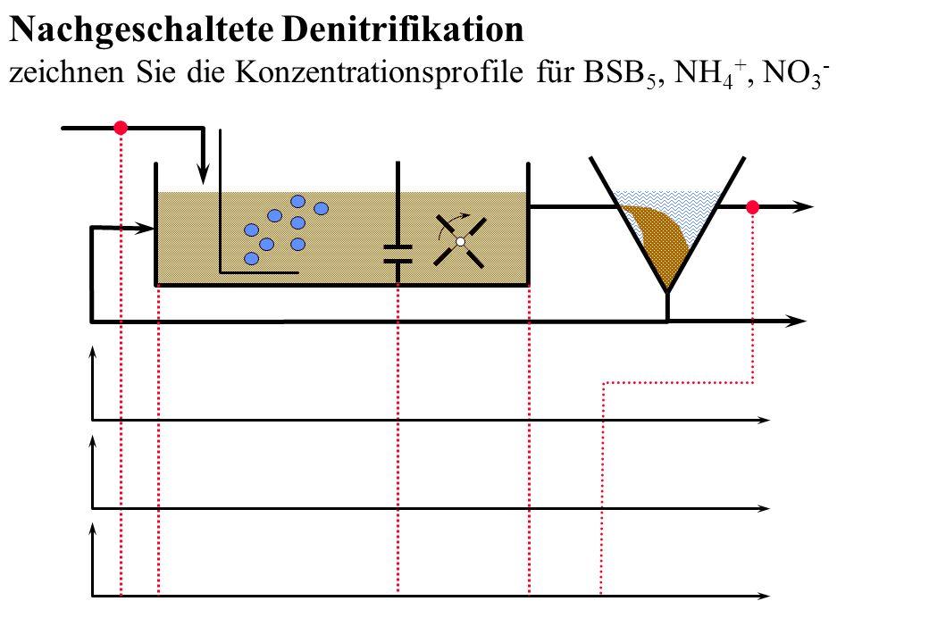 Nachgeschaltete Denitrifikation zeichnen Sie die Konzentrationsprofile für BSB 5, NH 4 +, NO 3 -