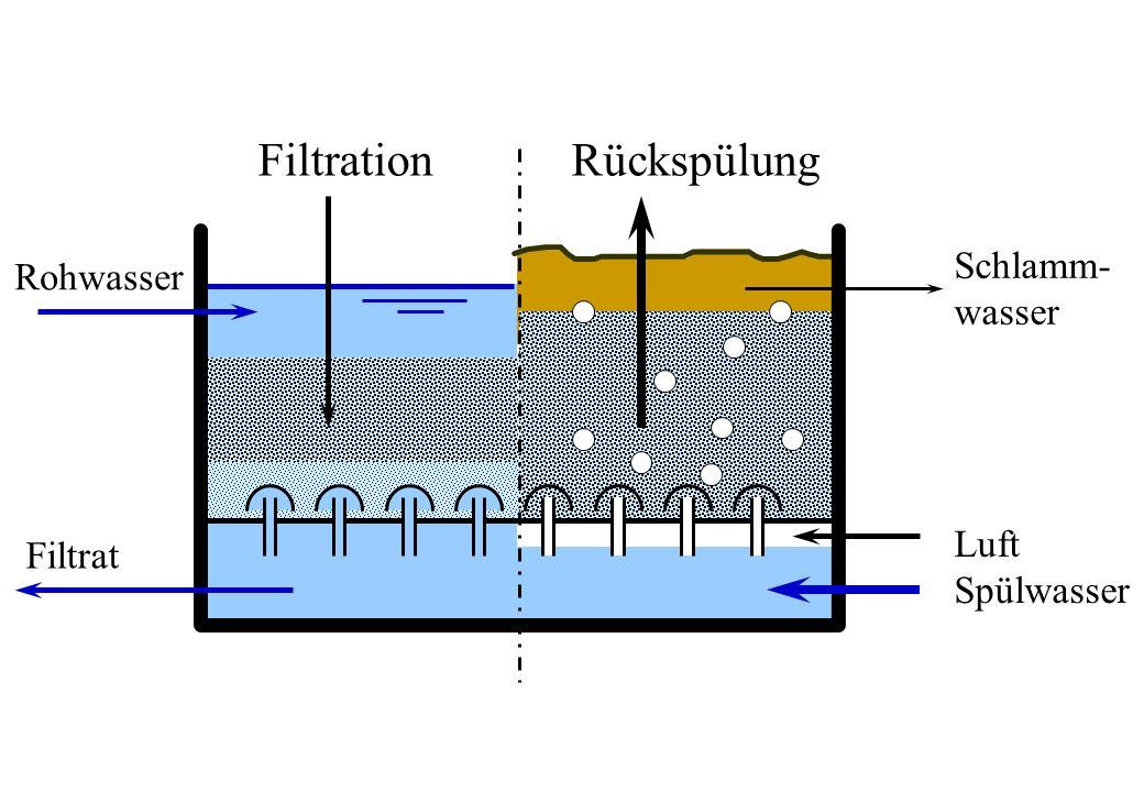 Rohwasser Filtrat FiltrationRückspülung Schlamm- wasser Luft Spülwasser