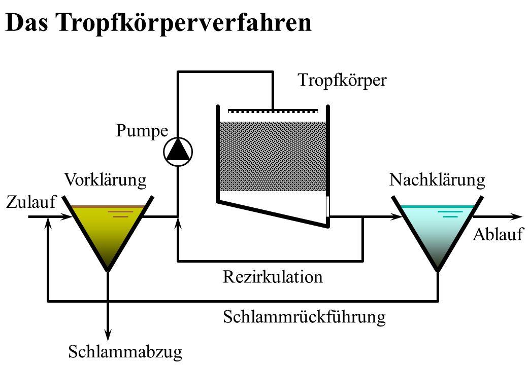 Schlammabzug Schlammrückführung Rezirkulation Vorklärung Tropfkörper Nachklärung Ablauf Zulauf Pumpe Das Tropfkörperverfahren