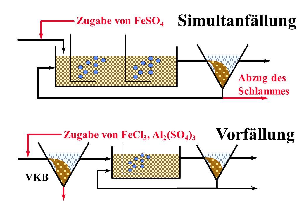 Simultanfällung Vorfällung Zugabe von FeSO 4 Abzug des Schlammes Zugabe von FeCl 3, Al 2 (SO 4 ) 3 VKB