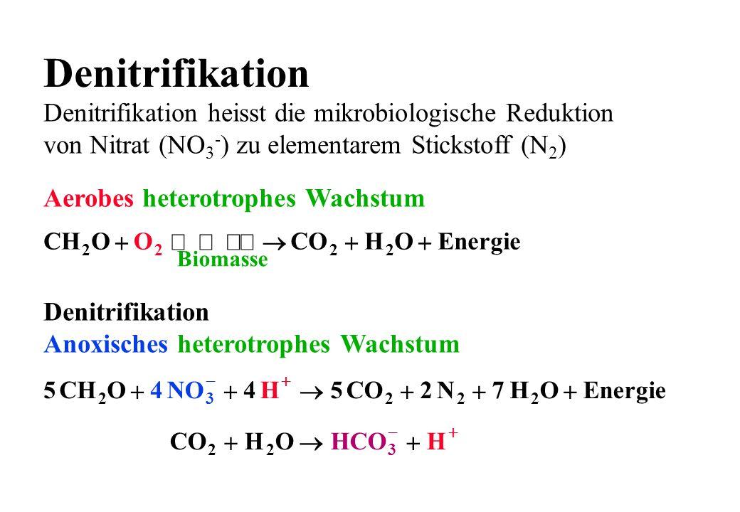 Denitrifikation Aerobes heterotrophes Wachstum Denitrifikation Anoxisches heterotrophes Wachstum Denitrifikation heisst die mikrobiologische Reduktion