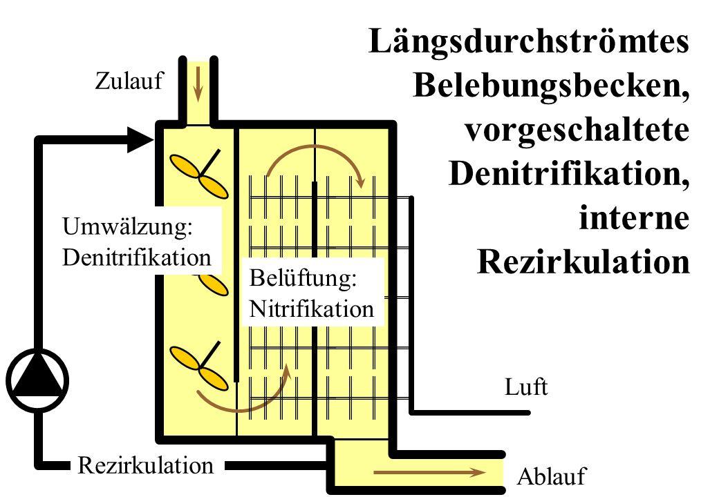 Zulauf Ablauf Luft Längsdurchströmtes Belebungsbecken, vorgeschaltete Denitrifikation, interne Rezirkulation Umwälzung: Denitrifikation Belüftung: Nit