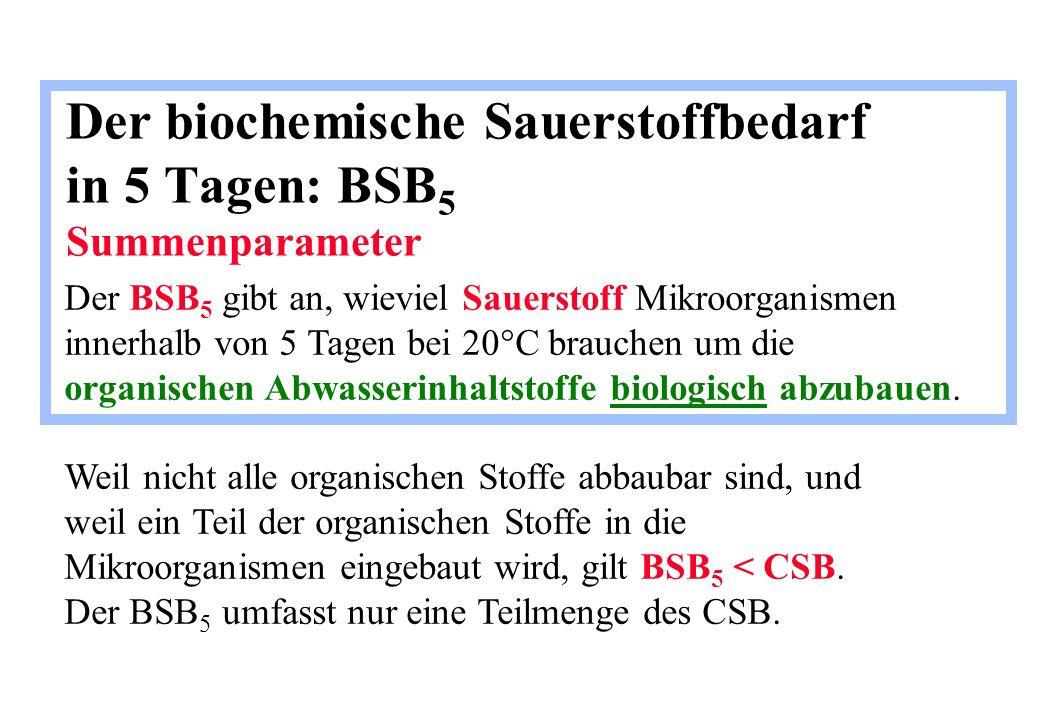 Der biochemische Sauerstoffbedarf in 5 Tagen: BSB 5 Summenparameter Der BSB 5 gibt an, wieviel Sauerstoff Mikroorganismen innerhalb von 5 Tagen bei 20