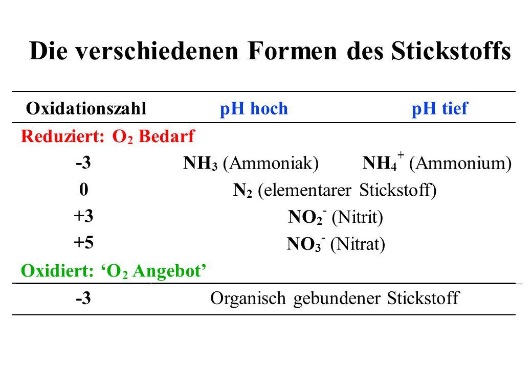 OxidationszahlpH hochpH tief Reduziert: O 2 Bedarf + NH 3 (Ammoniak) NH 4 (Ammonium) -3 0 +3 +5 N 2 (elementarer Stickstoff) NO 2 - (Nitrit) NO 3 - (N
