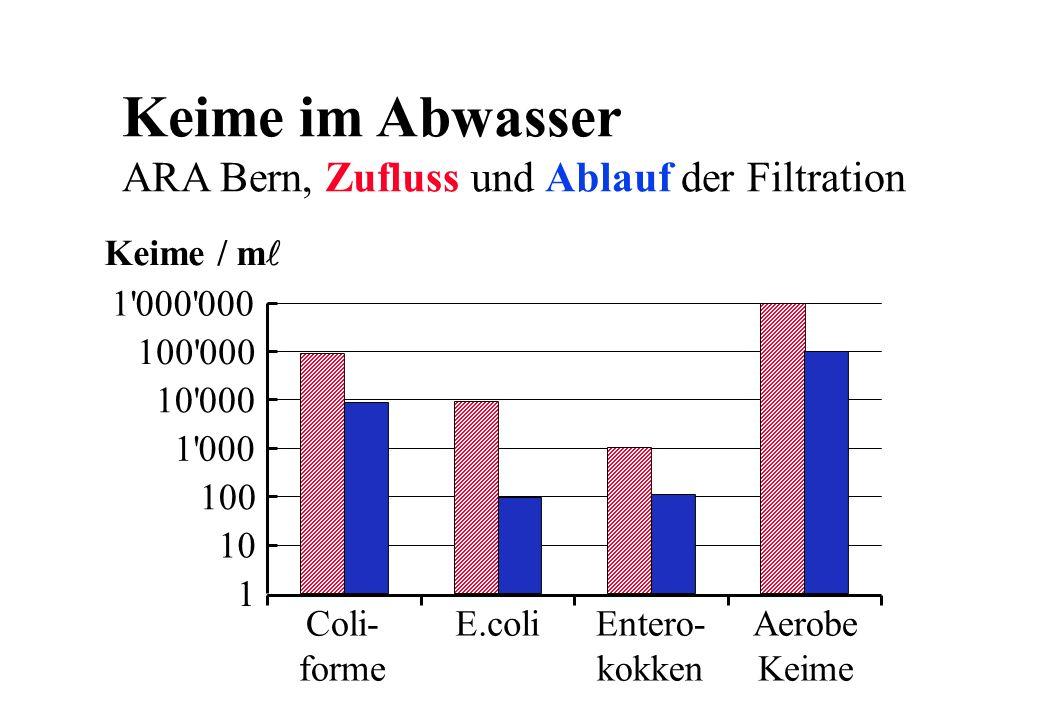 Keime im Abwasser ARA Bern, Zufluss und Ablauf der Filtration 1 10 100 1'000 10'000 100'000 1'000'000 Coli- forme E.coliEntero- kokken Aerobe Keime Ke