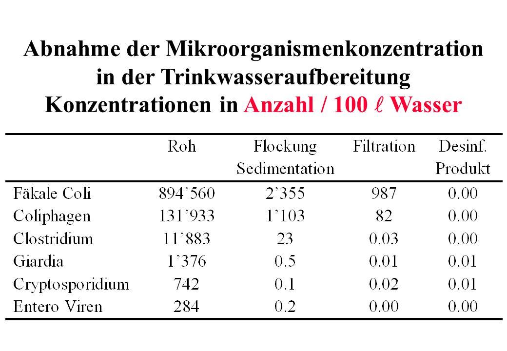 Abnahme der Mikroorganismenkonzentration in der Trinkwasseraufbereitung Konzentrationen in Anzahl / 100 Wasser
