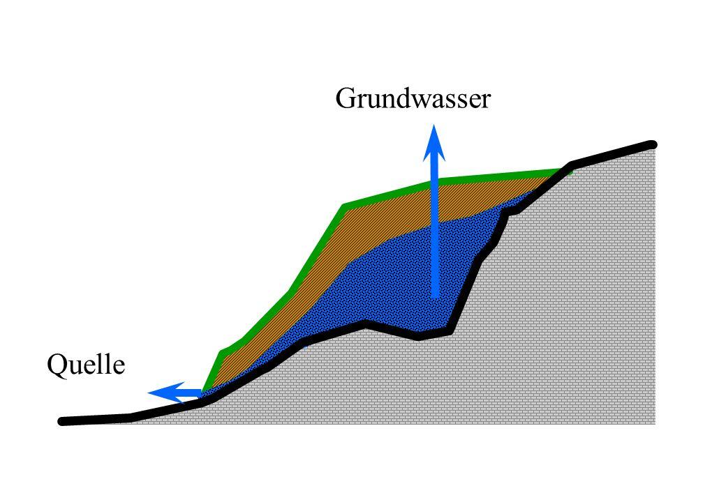 Trinkwasseraufbereitung CH Einstufige Aufbereitung = Desinfektion