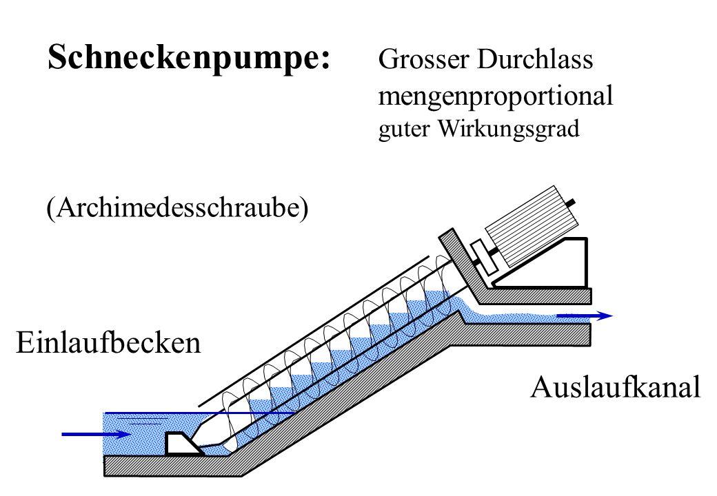 Einlaufbecken Auslaufkanal Schneckenpumpe: Grosser Durchlass mengenproportional guter Wirkungsgrad (Archimedesschraube)