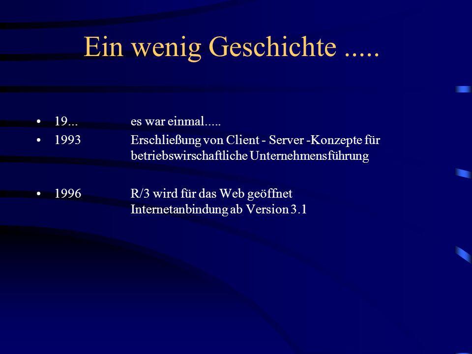 Gliederung Einführung und Grundlagen (Heiko Hofele) Der Weg vom Web ins R/3 und zurück (Volker Lindenbacher) SAP@Web-Studio und HTML-Business (Jochen