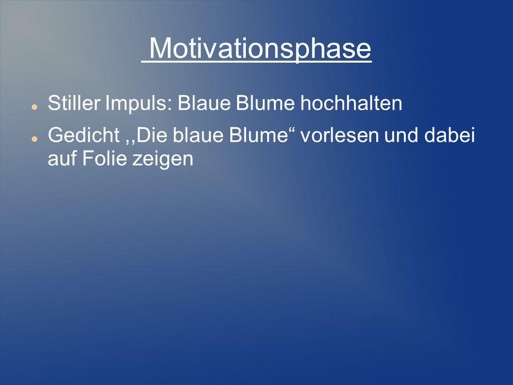 Motivationsphase Stiller Impuls: Blaue Blume hochhalten Gedicht,,Die blaue Blume vorlesen und dabei auf Folie zeigen