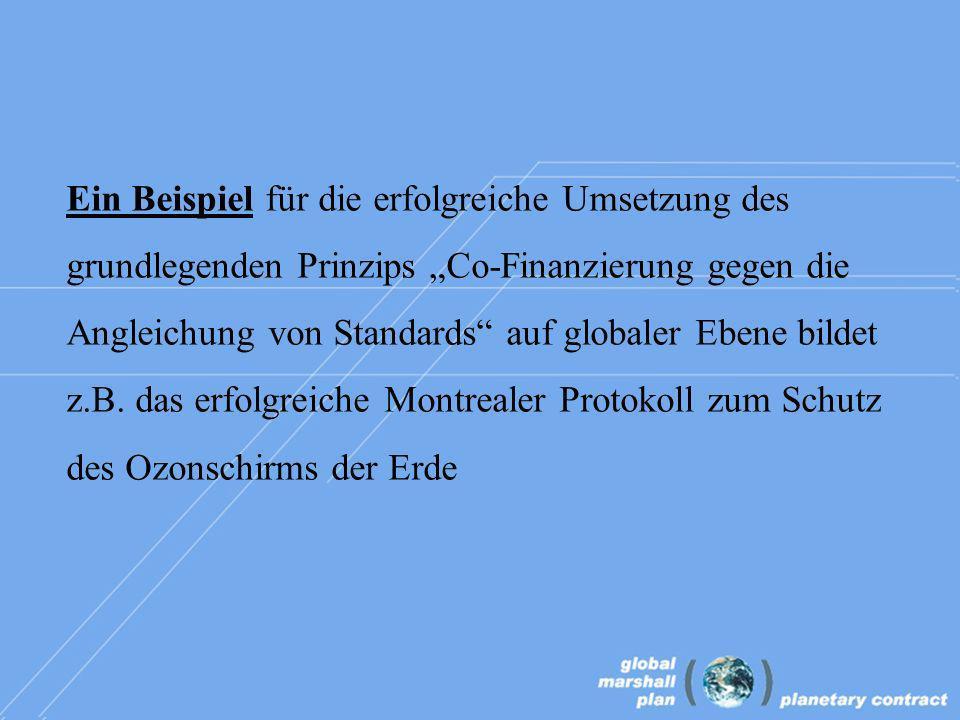 Ein Beispiel für die erfolgreiche Umsetzung des grundlegenden Prinzips Co-Finanzierung gegen die Angleichung von Standards auf globaler Ebene bildet z.B.